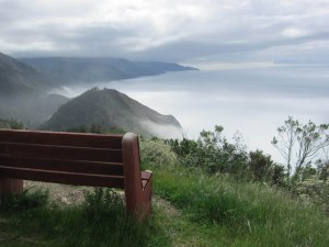 bench overlooking water, nature silent retreat